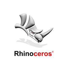לימודי ריינו (Rhino)